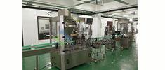全自动粉末pingzhuang灌zhuang生产线-营养粉灌zhuang生产线